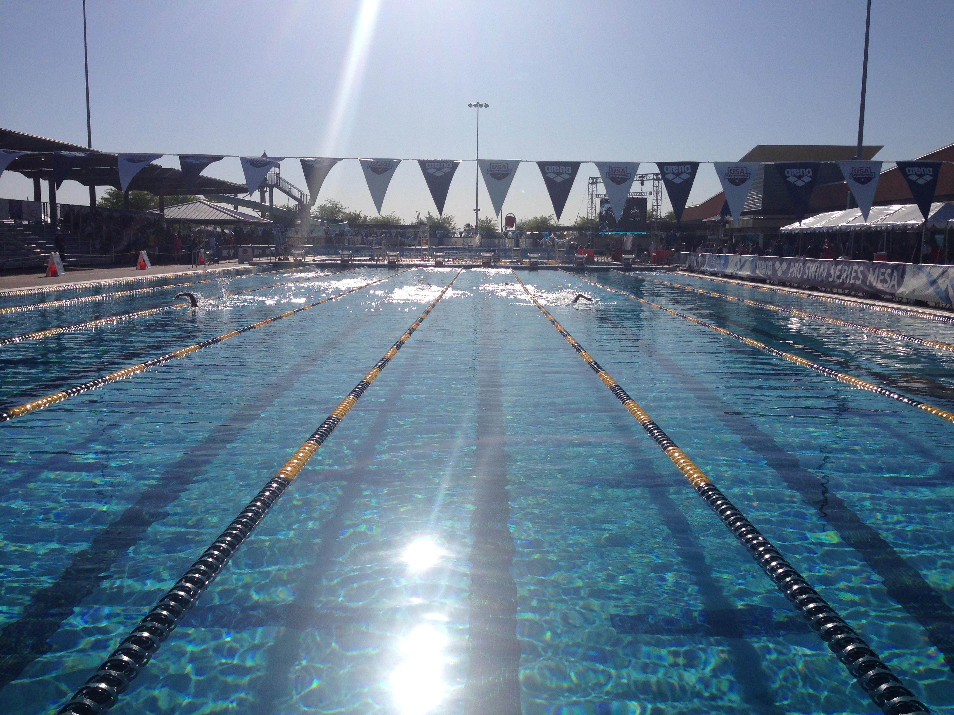 The Blog – Page 3 – Swim Along Blog