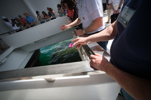 Tossing flowers into the wishing well at the USS Arizona Memorial